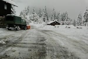 Was kann man im Winter zum Streuen verwenden?